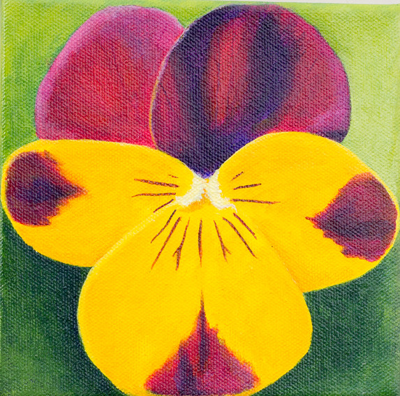 Pansy #1 - Sold