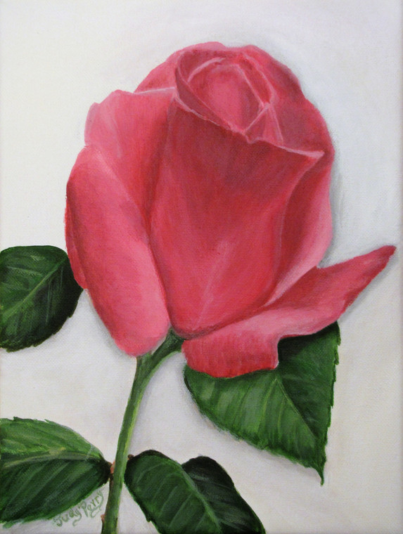 2009 Gift to Margaret Perry - Pink Rose