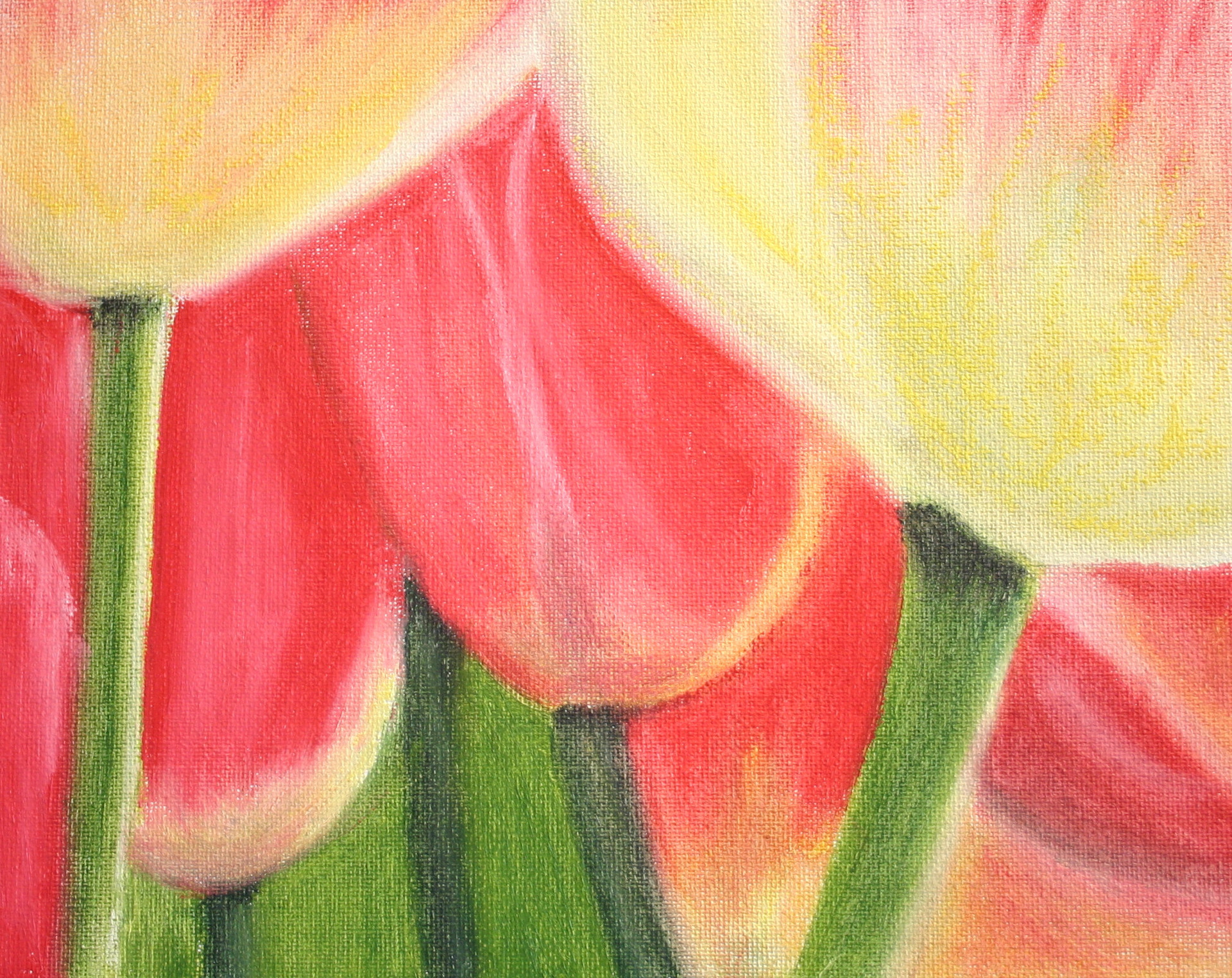 Tulip Spring 8 x 10 - Oil Stick - not for sale