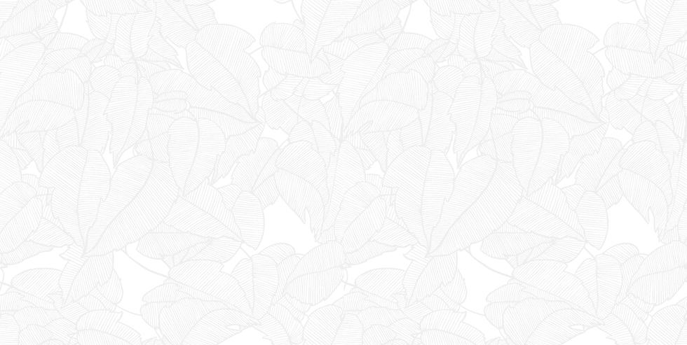 uirapuru6.png