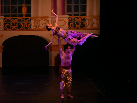 Dancer Blog: Flexibility and Strength