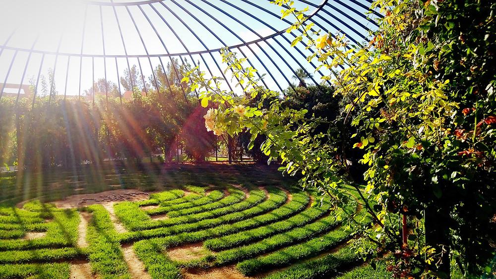 landscaping in san ramon