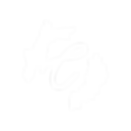 Chosen Photography - Logo Alternatives-0
