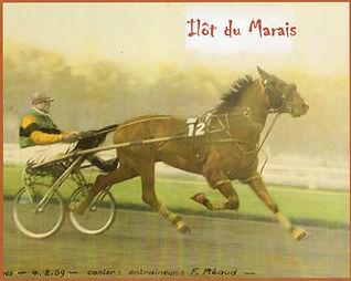 Ilot du Marais.jpg