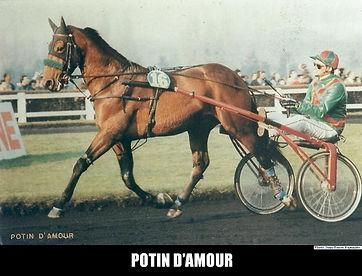 Potin-d-Amour.jpg