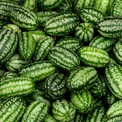 Cucamelon Seeds (Pack of 20 seeds)