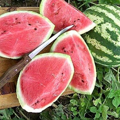 Organic Watermelon - (30 Seeds)