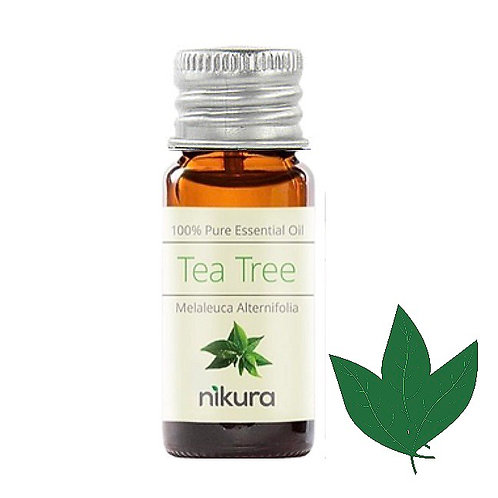 Tea Tree Essential Oil (10ml)
