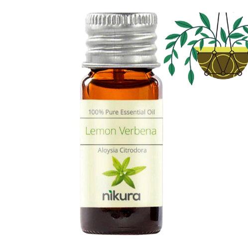 Pure Lemon Verbena Essential Oil (10ml)