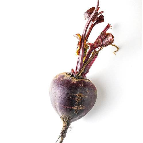 Seed Tape Beetroot BOLTARDY - (Approx 300 Seeds)
