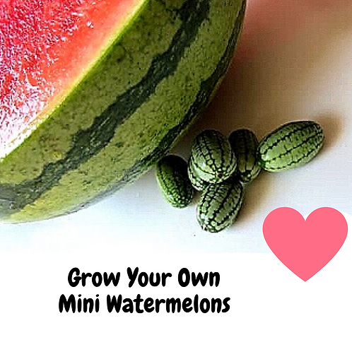 Grow Your Own Mini CucaMelons Seeds (Pack of 20)