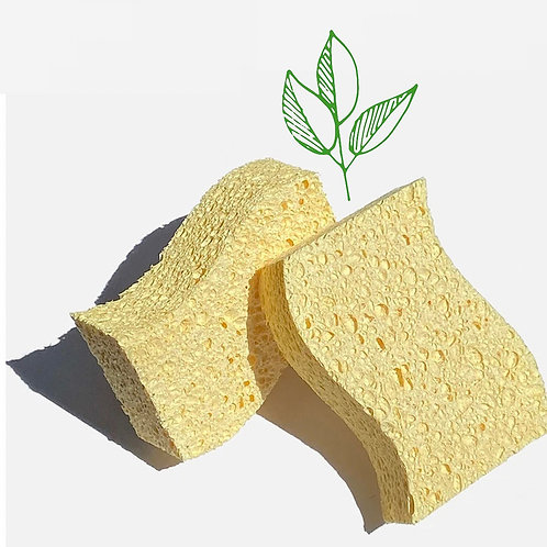 Plastic Free Cleaning Sponges (Pack of 2)