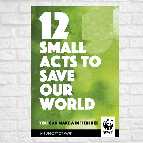 (Pre Owned) 12 Small Acts to Save Our World (Hardback)