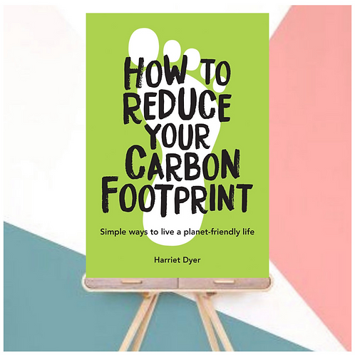How To Reduce Your Carbon Footprint (Paperback)