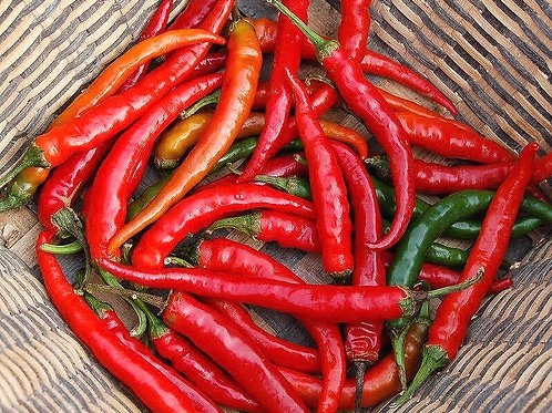 Hot Chilli Pepper Ring of Fire Organic - 80 Seeds