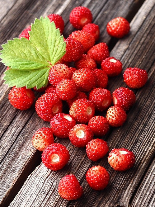 Alpine Strawberry Regina (Pack of 500 Seeds)