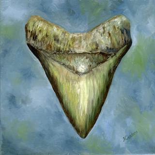 Megalodon Shark Tooth By Andrea Giordano