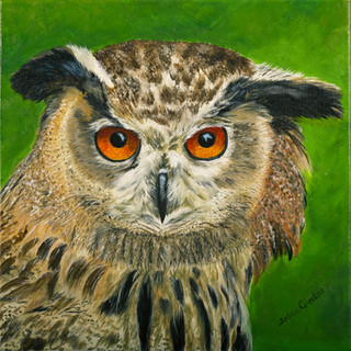 Wise Eyes By Andrea Giordano