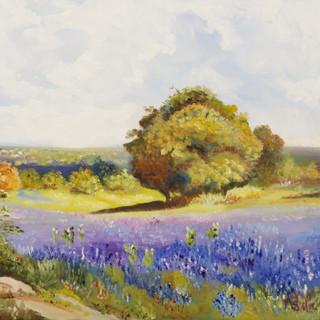 Lavender Field By Marcia Sangillo