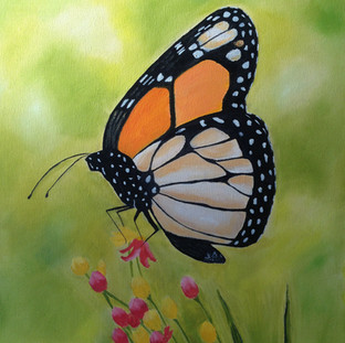 Monarch Butterfly With Pink Flowers By Andrea Giordano