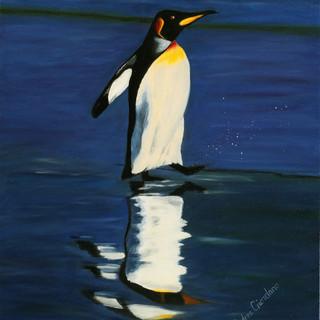 Wading Penguin By Andrea Giordano