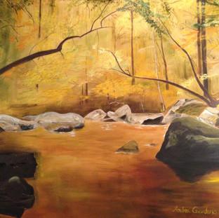 Ken Lockwood Gorge By Andrea Giordano