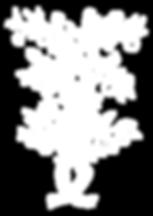 arbol-frutal-27325.png