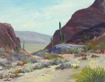Before Tucson