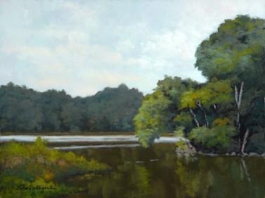 Anacostia Wetlands