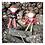 Thumbnail: Christmas Elf Girl - Embroidery Machine Pattern
