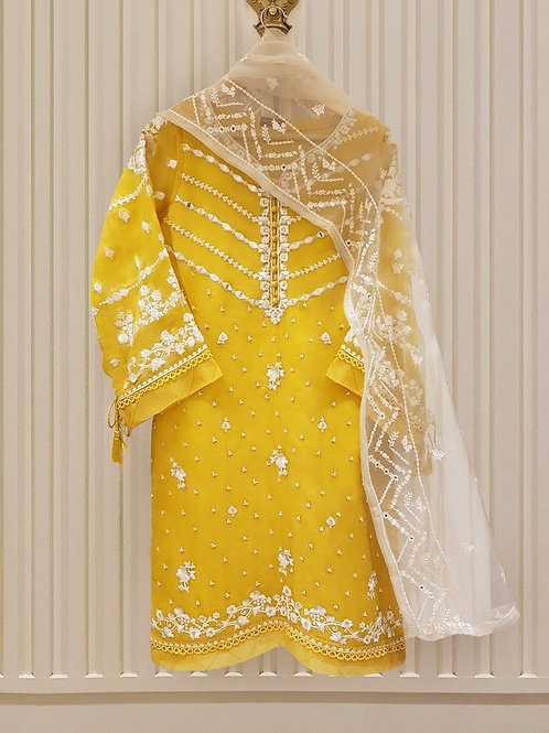 AGHA NOOR Pure Organza Embroidered Kurti