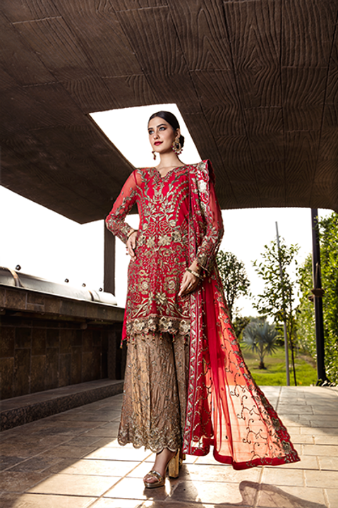 ZEENAT Collection by ZEBTAN VOL-3