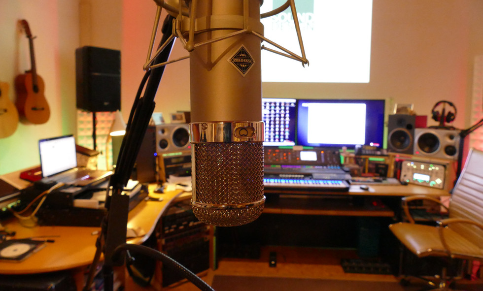 State-of-the-art vocal microphones