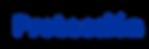 logo proteccion.png