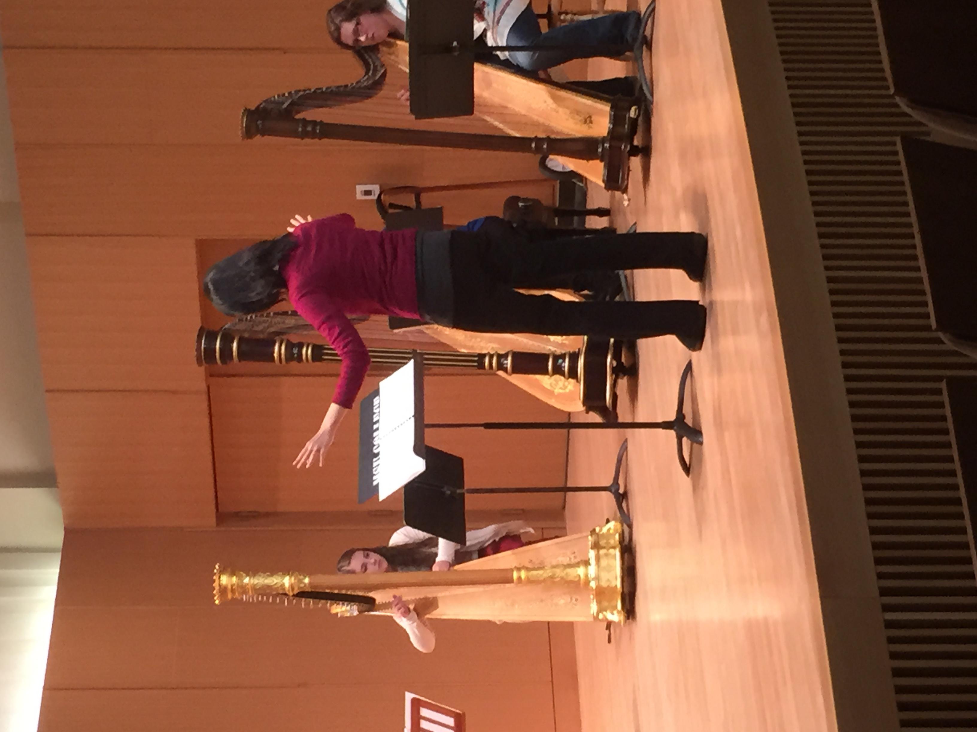 Harp ensemble