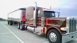 CDJ Bulk Express