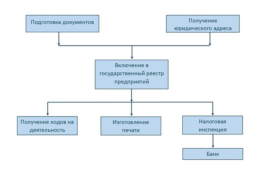 Структура создания ООО.jpg