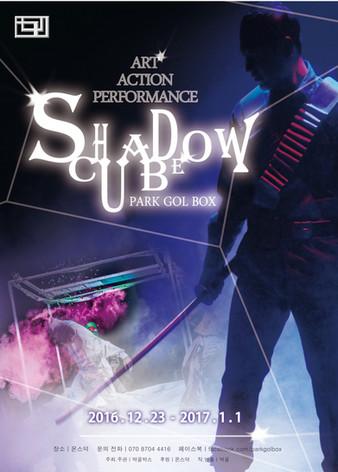 ShadowCube . 2016
