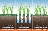 3 images of the process of a lawn aeration