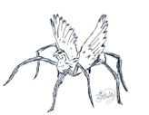 falconspider.png