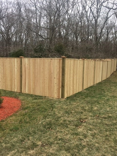 liberty fence board 3.jpg