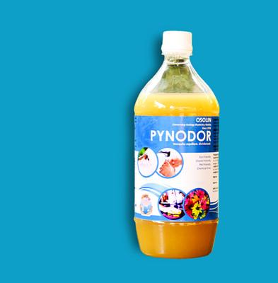 Website - Pynodor - 2.jpg