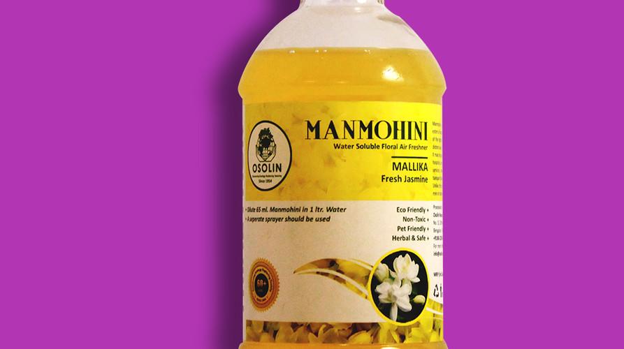 Website - Manamohini Mallika.jpg