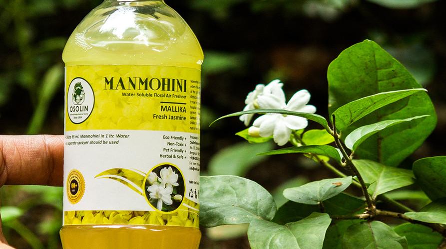 Website - Manamohini Mallika 1.jpg