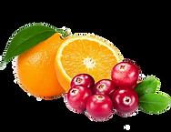 Cranberry Orange.png