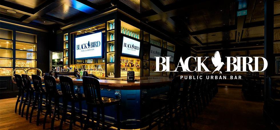 Blackbird-3.jpg