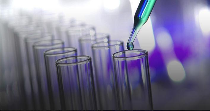 estudioa-in-vitro.jpg