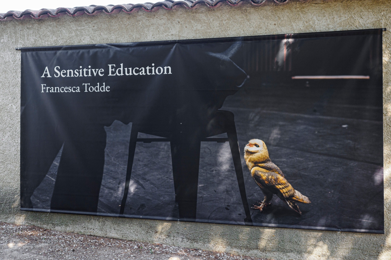 A Sensitive Education