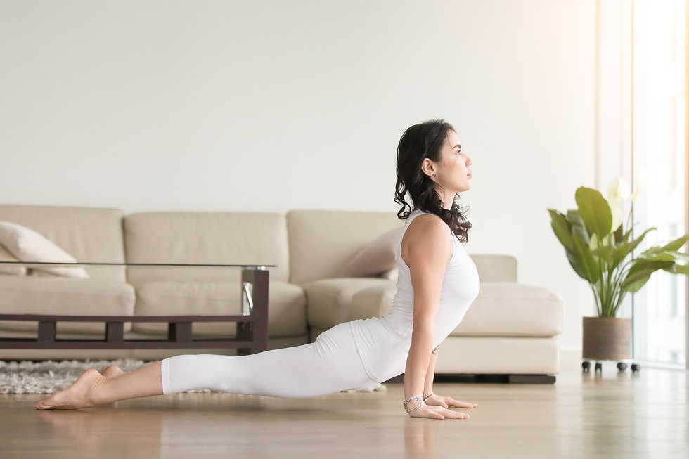 Young attractive woman practicing yoga a