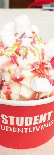 branded-ice cream-tub-mr whippy.JPG